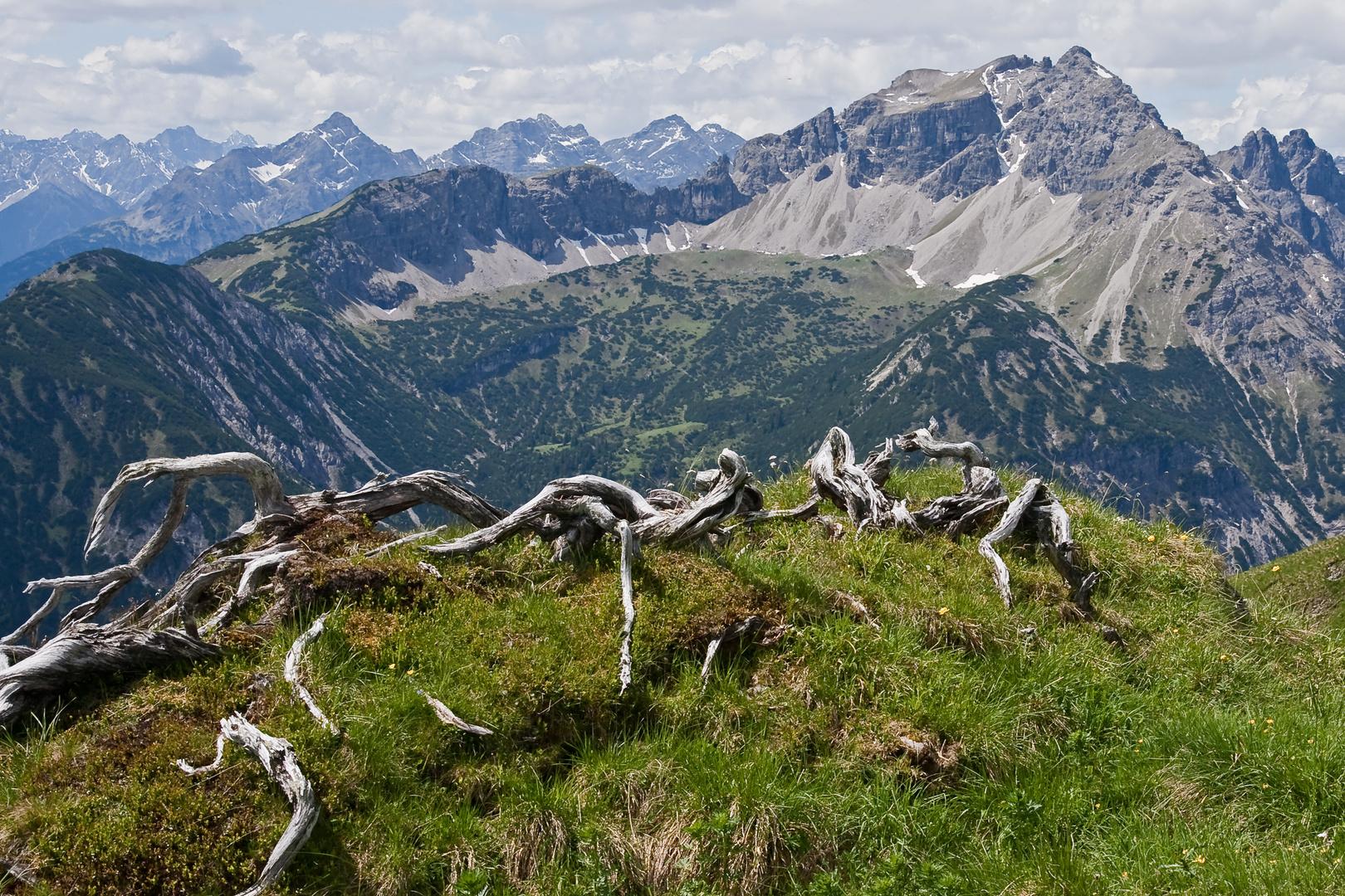 Lailachspitze 2274 m