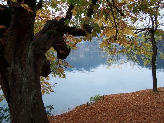 Lake Bled, Slowenia