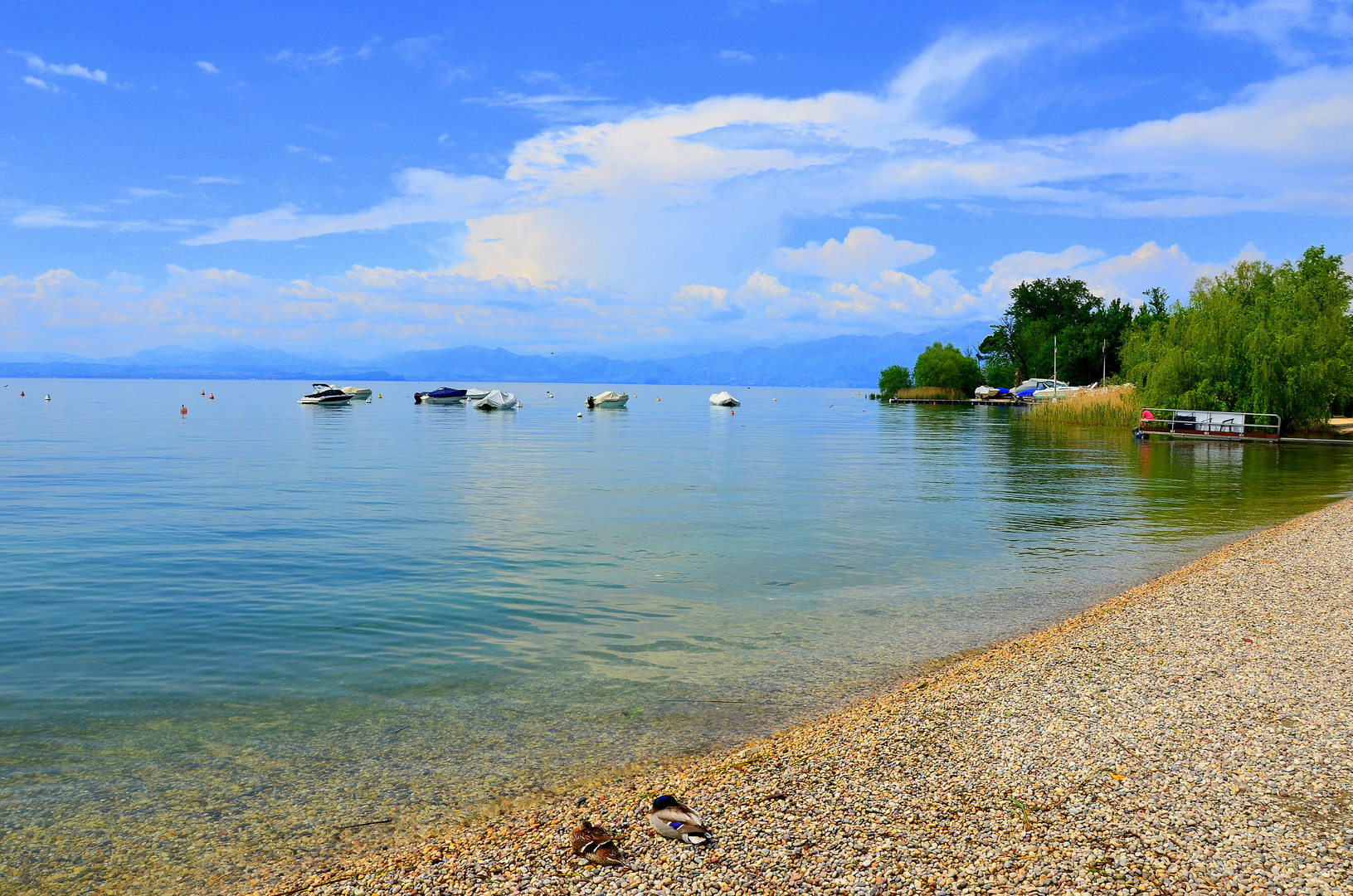 Lake Garda, near Lazise - Spring 2014