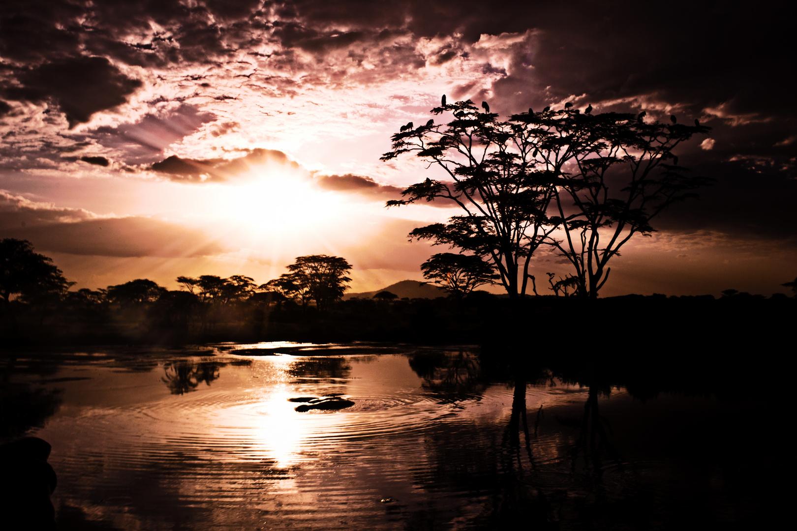 Lake in Serengeti