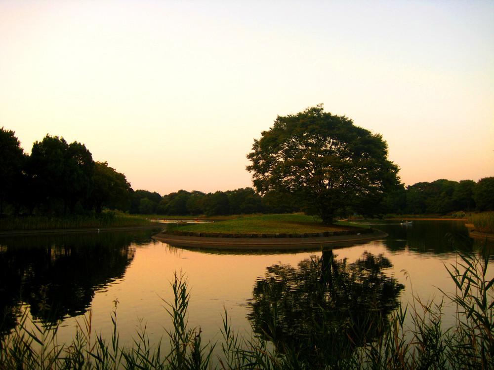 Lake in Tachikawa