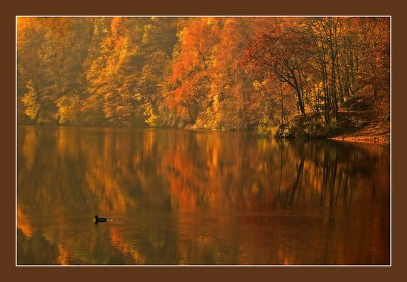 Lake of Colors
