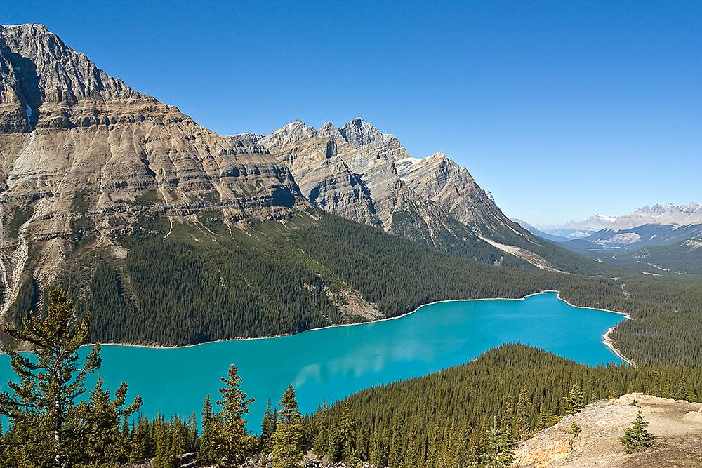 Lake Peyto - Canada 2008