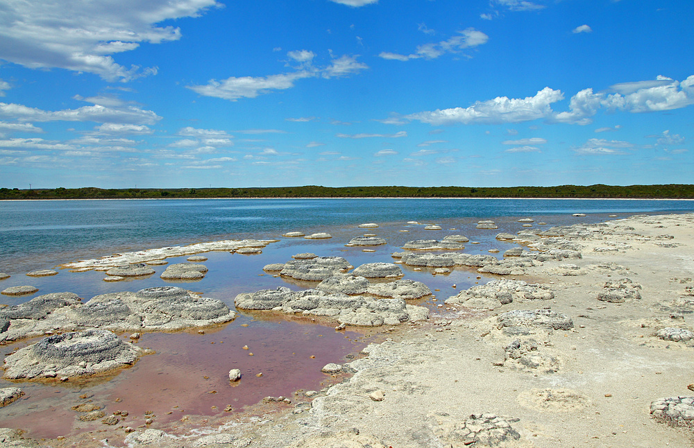 ..Lake Thetis 2..