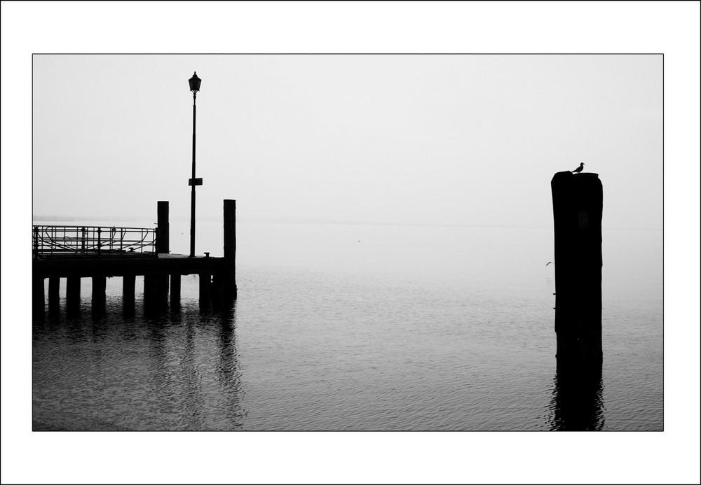 Lake Visions #1