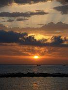 l'alba che riporta i colori