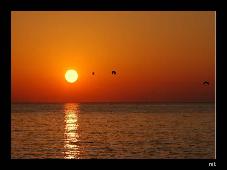 L'alba del giorno dei vent'anni di Mavi