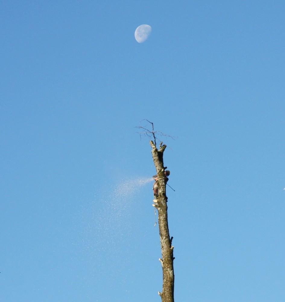 Lalelu-(nicht) nur der Mann im Mond schaut zu (auch der Fotograf war zur Stelle)