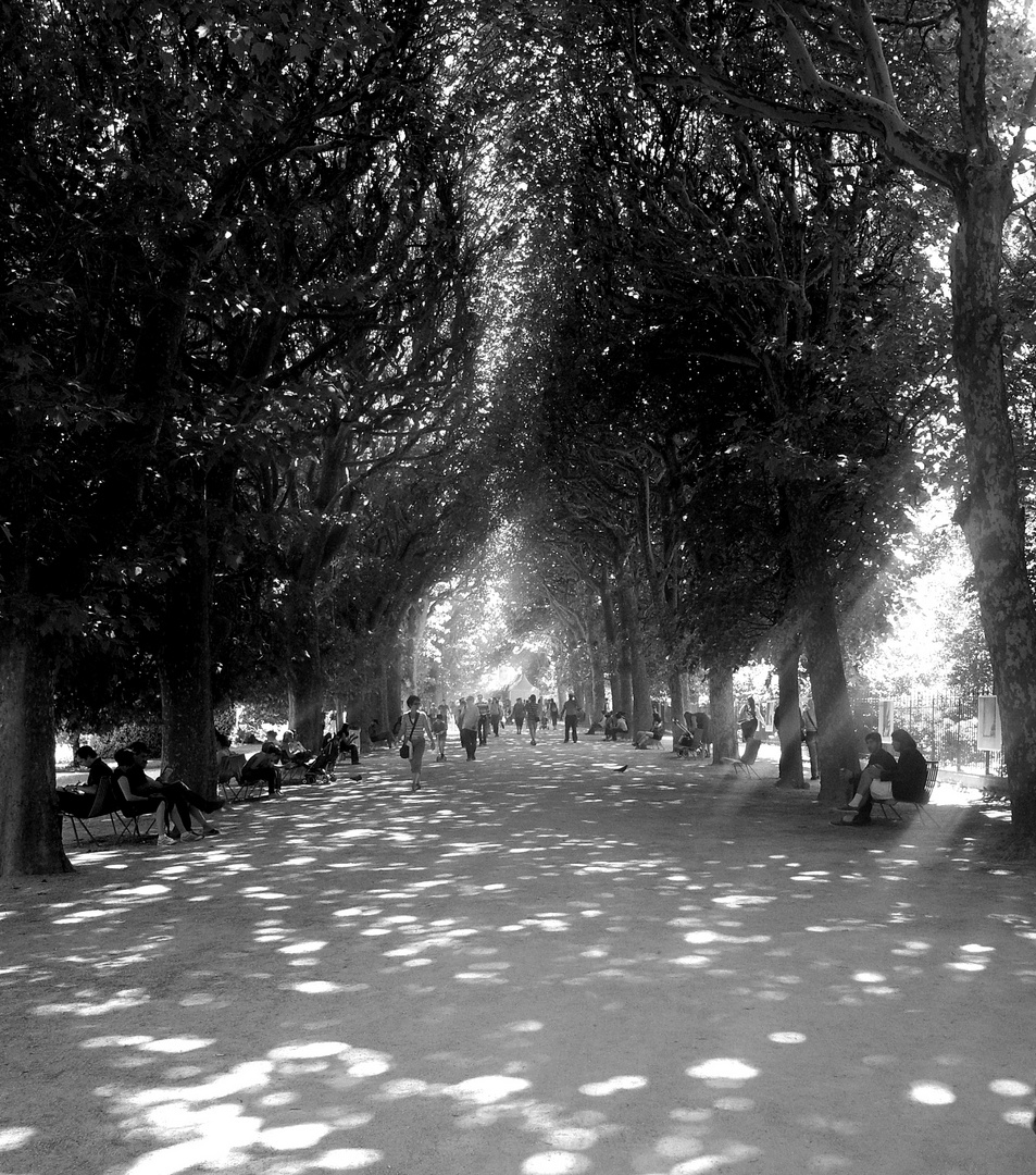 L'allée du parc