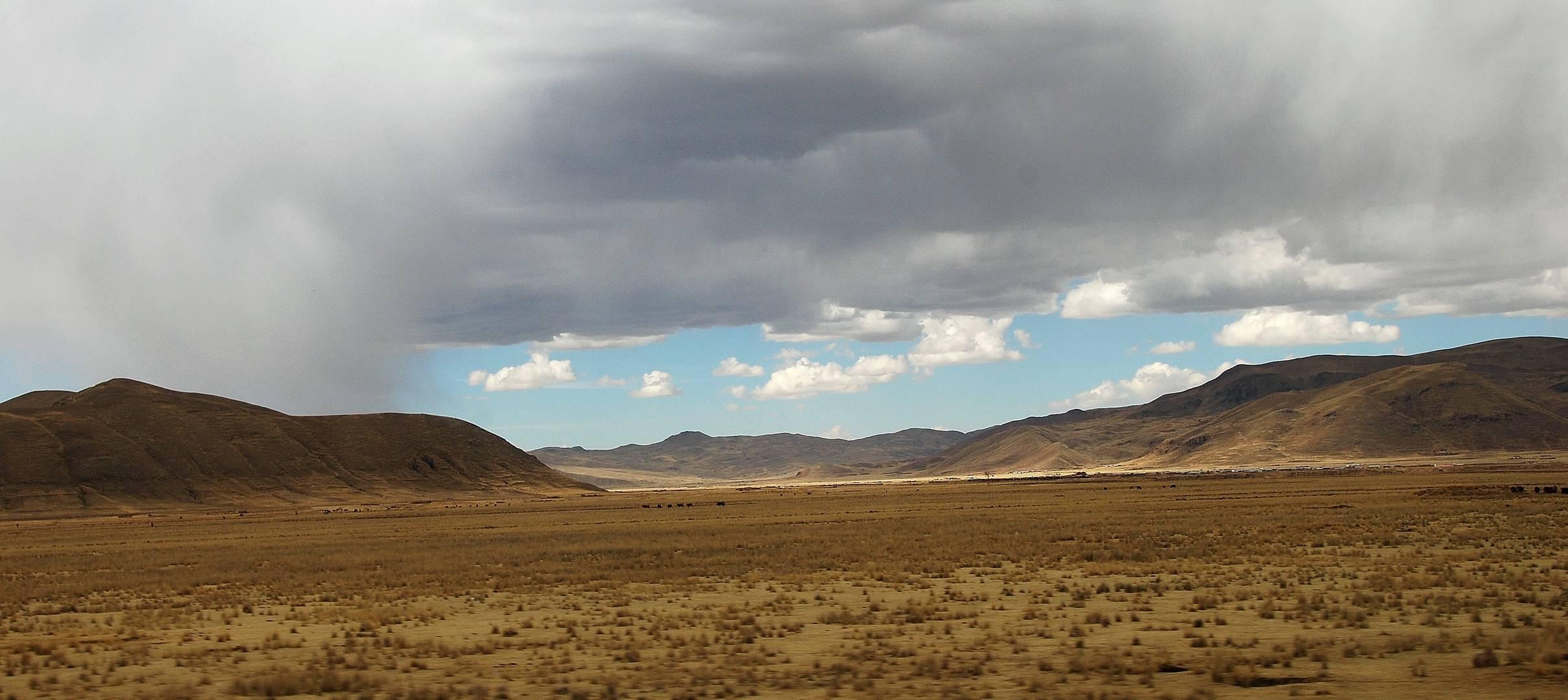 l'altiplano péruvien