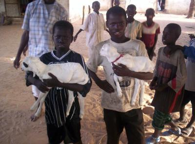l'amour des enfants africain pour les animaux domestique