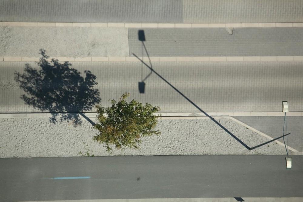 Lampe mit Baum