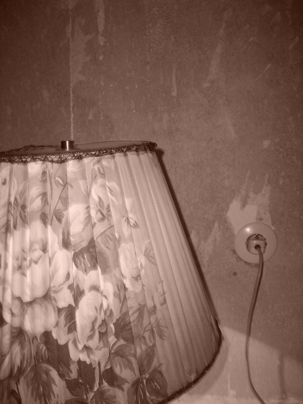 lampshade two
