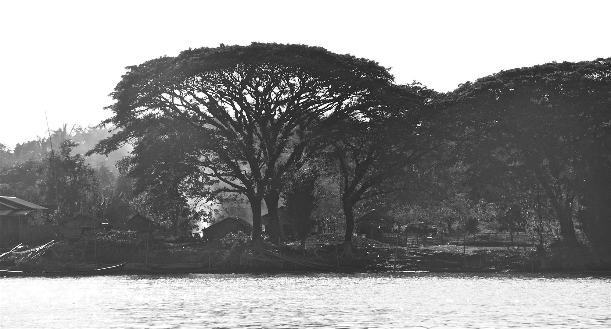land am irrawaddy