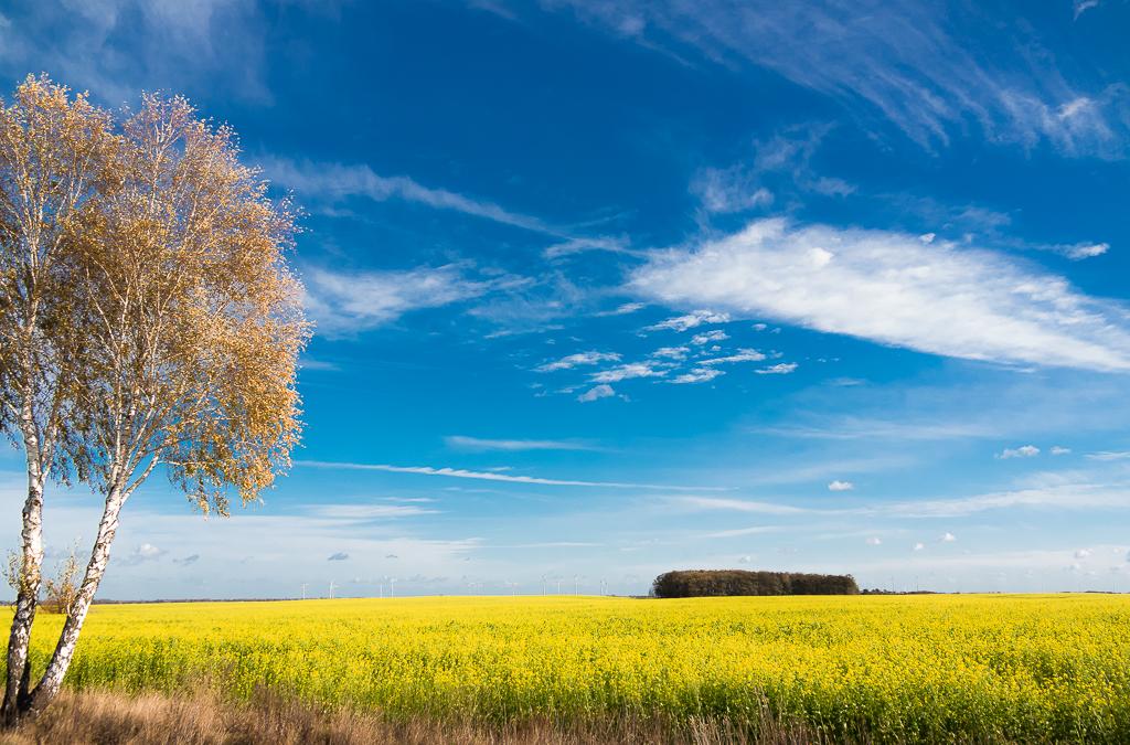 Land Brandenburg ist auch schön.