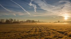 Land-Morgen