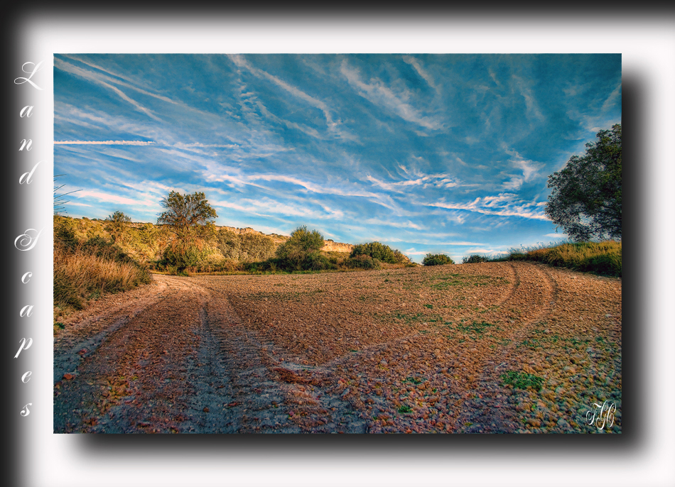 Land Scapes 1