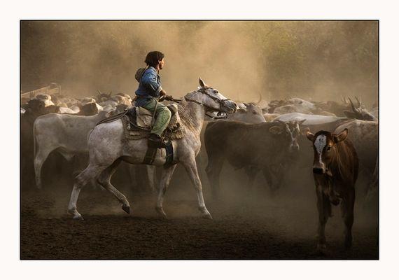 Landarbeiter in Paraguay