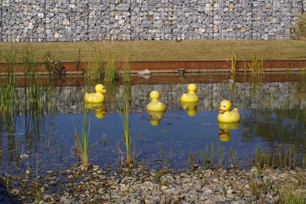 Landesgartenschau Wernigerode 2006