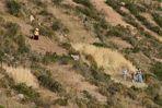Landleben am Titicacasee I