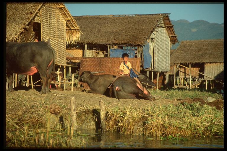 Landleben in Nyaung-Shwe, Lake Inle
