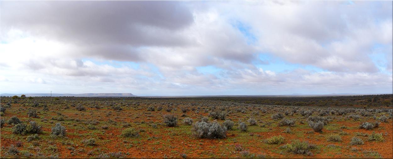 Landscape in SA