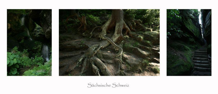 Landscape Sächsische Schweiz