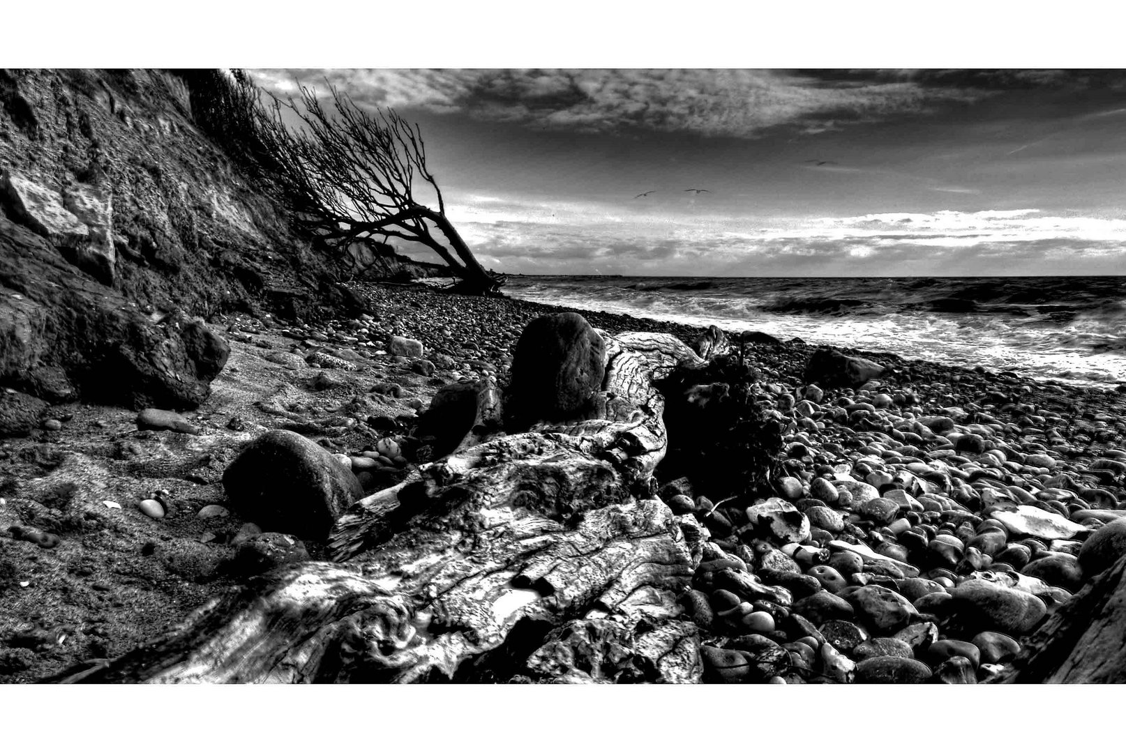 Landscape2012_001