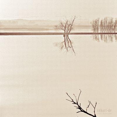 landschaft-0012
