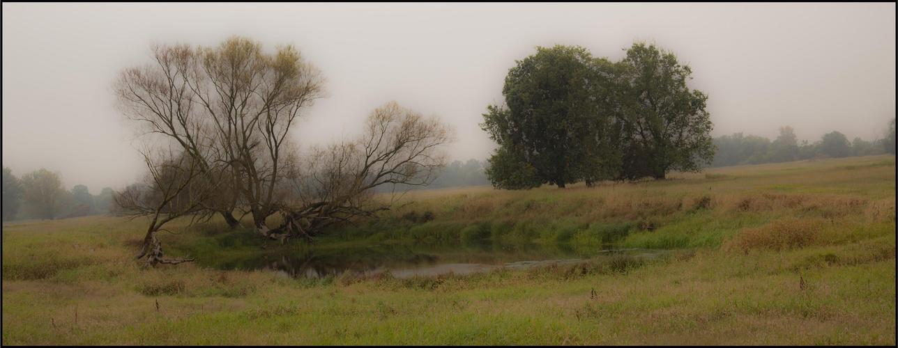 Landschaft 13