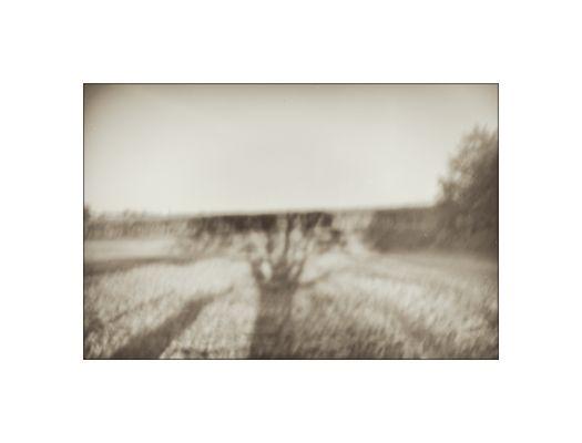 landschaft [2]