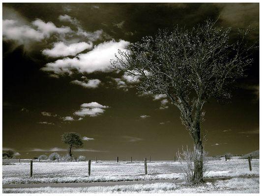 ...landschaft...