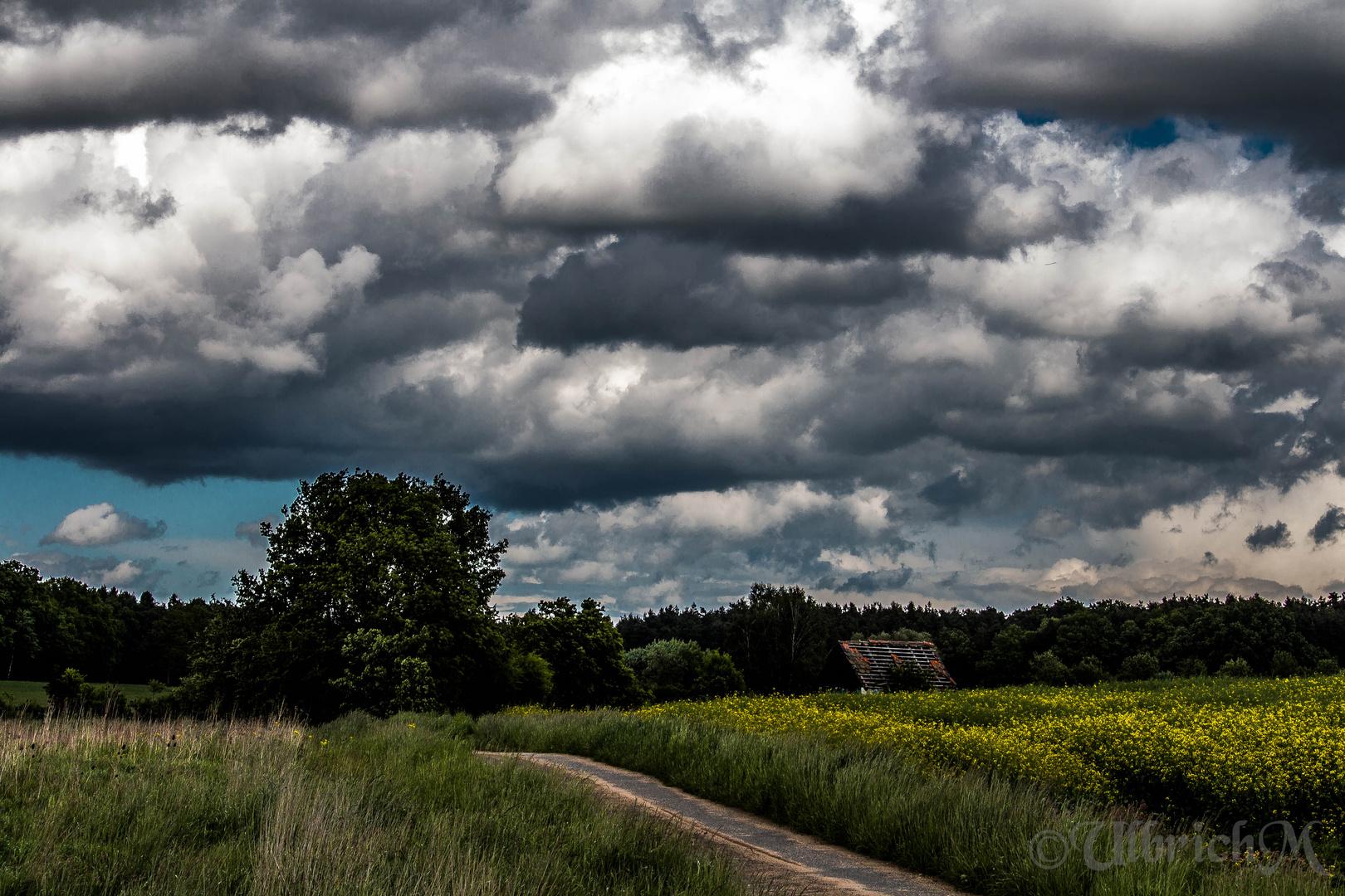Landschaft 5