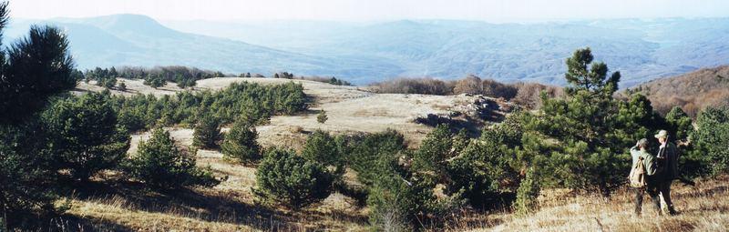Landschaft - Ai Petri - Krim - Ukraine