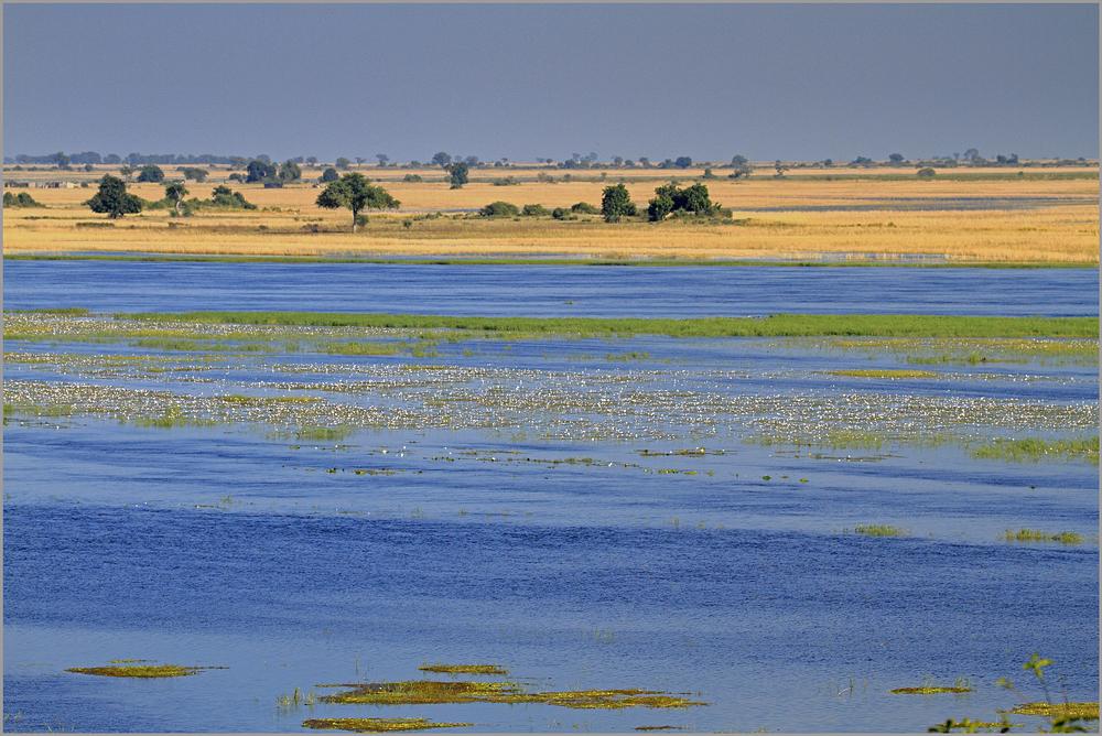 Landschaft am Chobe