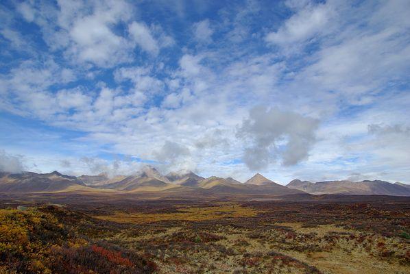 Landschaft am Denali Highway (Alaska)