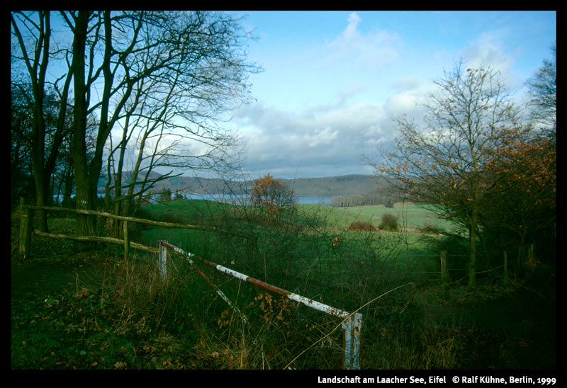 Landschaft am Laacher See 1999