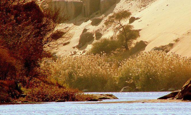 Landschaft am Nil - Assuan