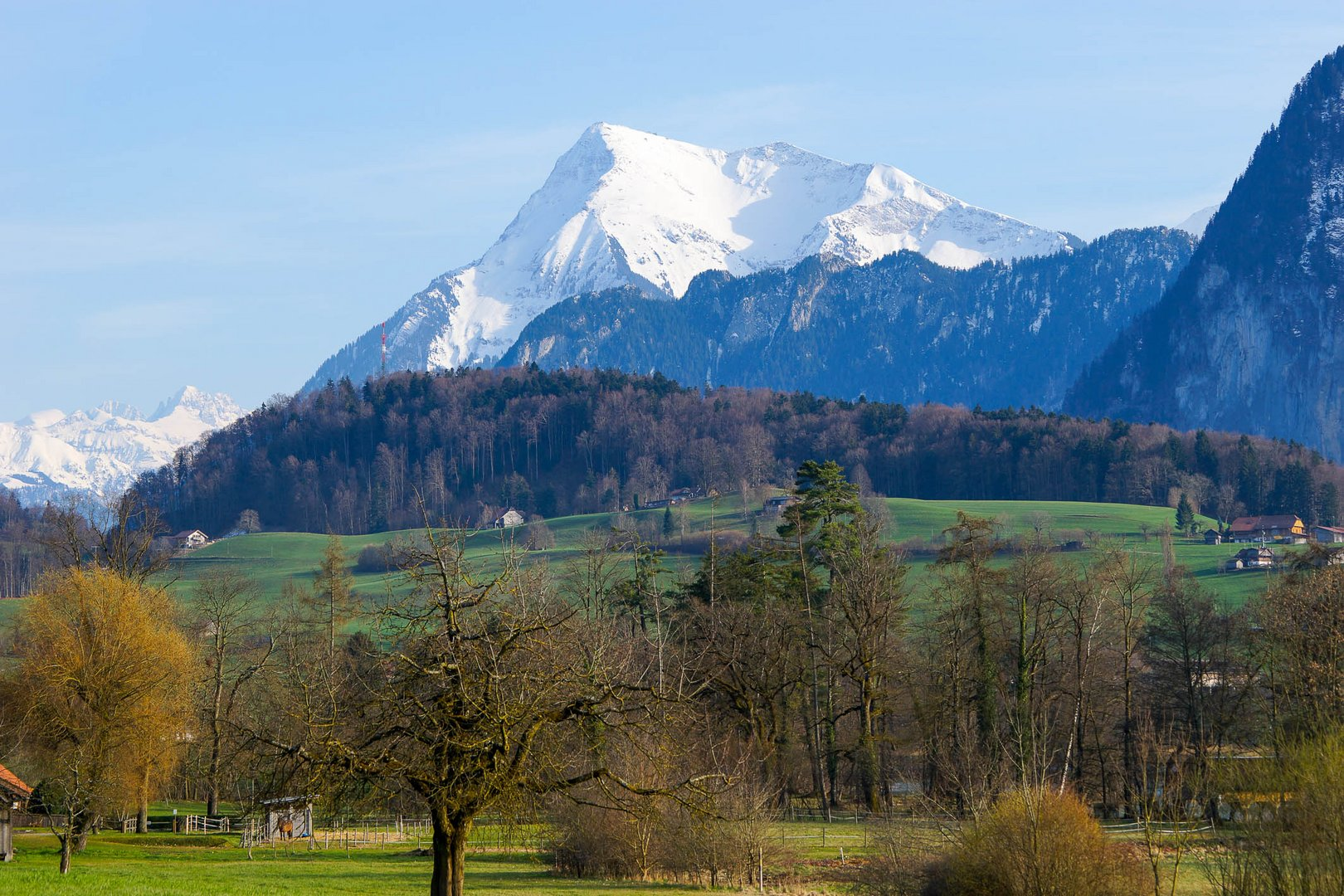 Landschaft bei Amsoldingen ( Thuner Westamt ) mit Niesen