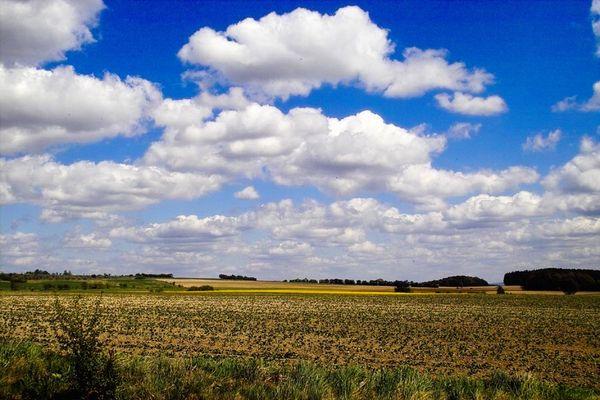 Landschaft bei Erlangen