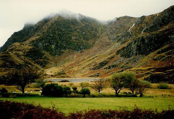Landschaft bei Killarney