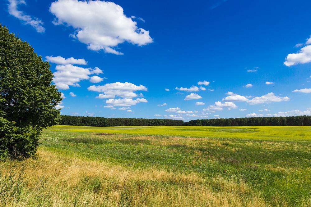 Landschaft bei Kunowice