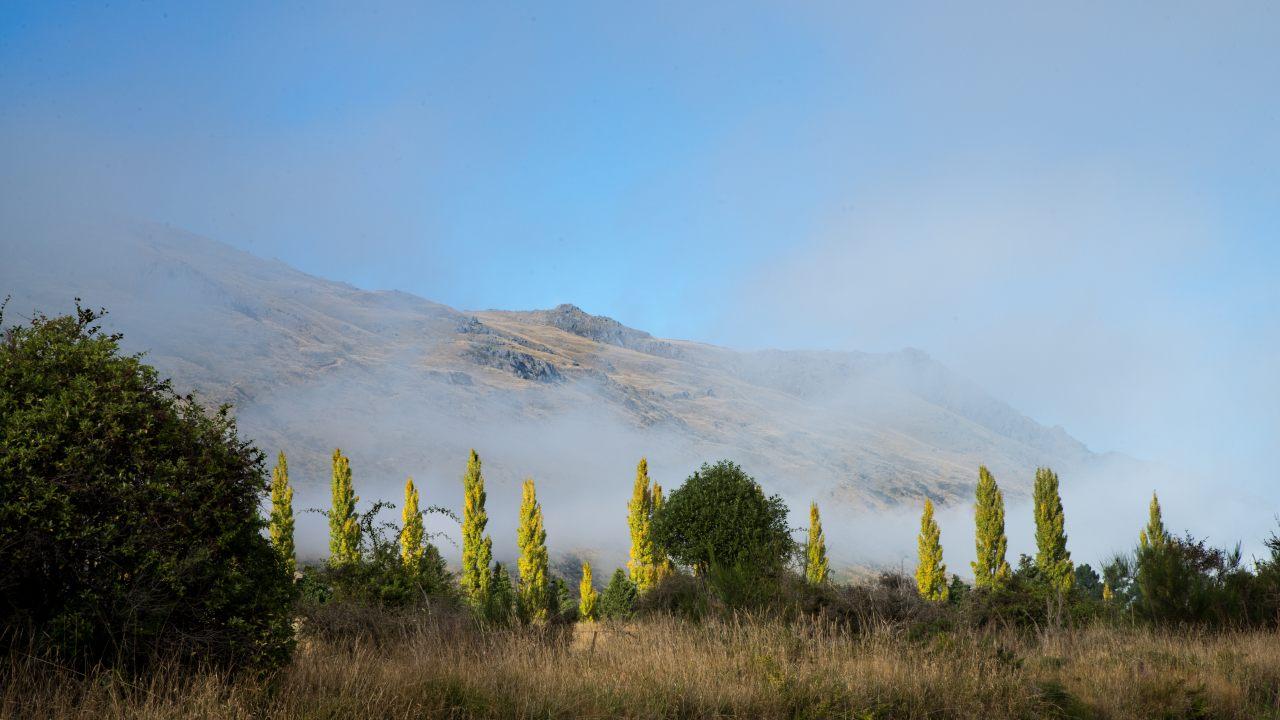 Landschaft bei Mossburn, auf der Südinsel Neuseelands.