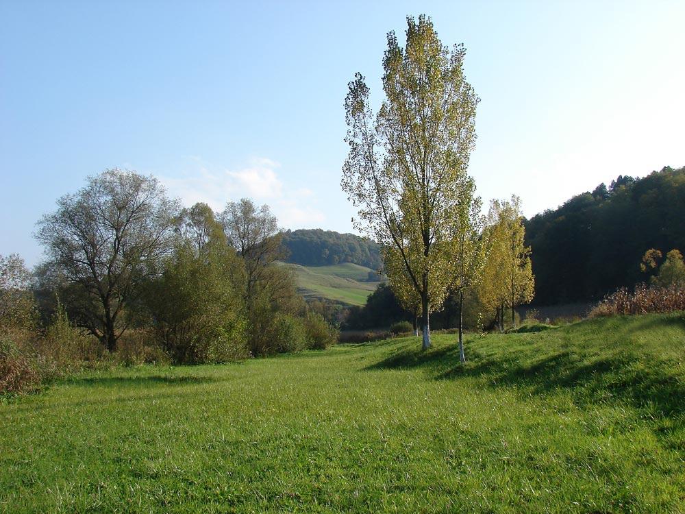 Landschaft bei Nemsa ( Nimesch ) in der Nähe von Medias
