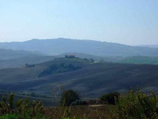 Landschaft bei Pienza (Provinz Siena)