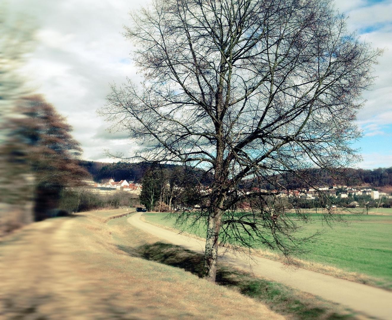 Landschaft im Februar