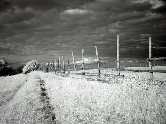 Landschaft im IR -2