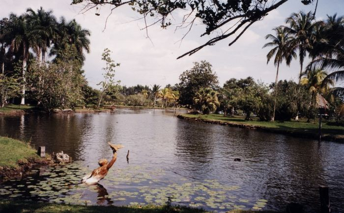 Landschaft im Süden Cubas