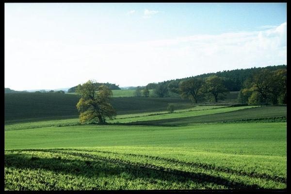 Landschaft in bei Weitendorf/Mecklenburg