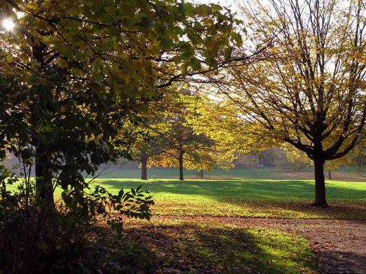 Landschaft in Herbst